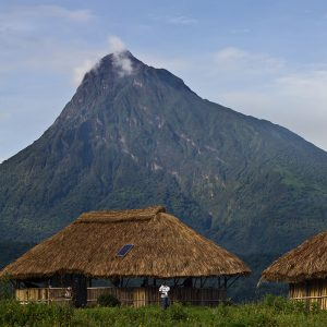 Virunga National Park DRC